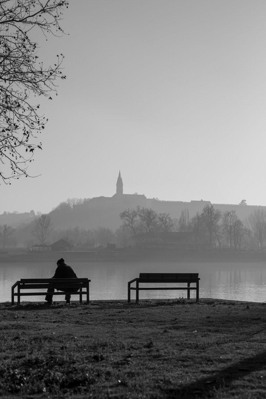 ráno, jeseň, hmla, koryta, čierna a biela, jazero, sedadlo, voda, svitania, západ slnka