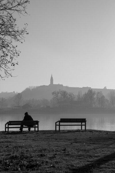 朝, 秋, 霧, 河川敷, 黒と白, 湖, 座席, 水, 夜明け, サンセット