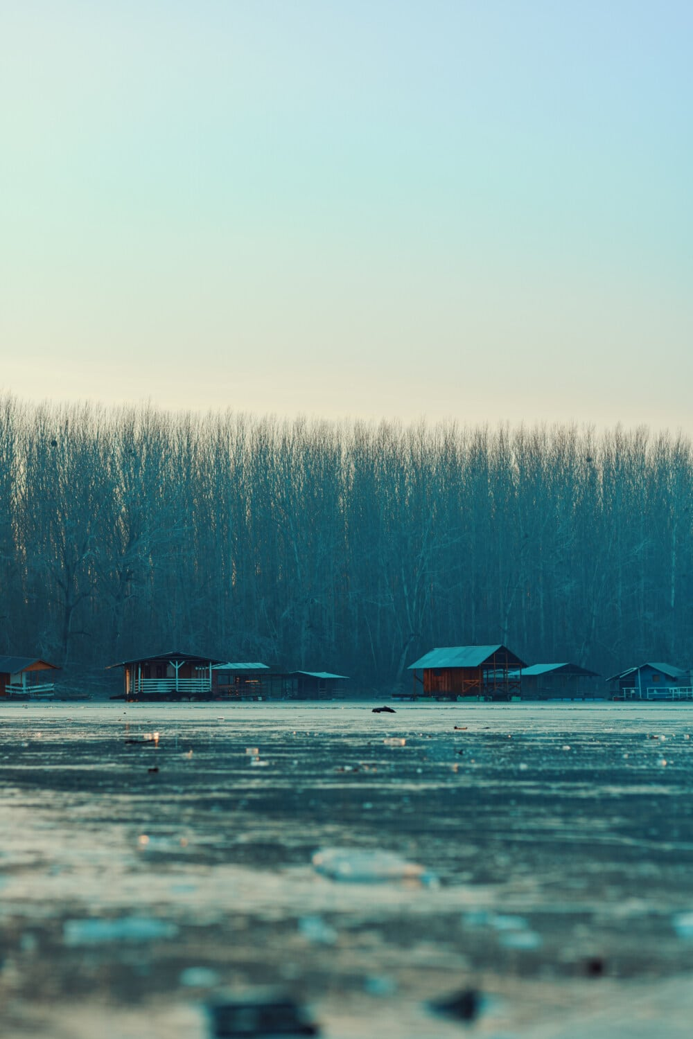 frozen, lake, winter, atmosphere, water, nature, dawn, wood, fog, landscape