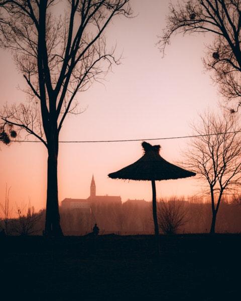 parasol, silhuet, kirketårnet, idylliske, solen, solnedgang, daggry, træ, landskab, natur