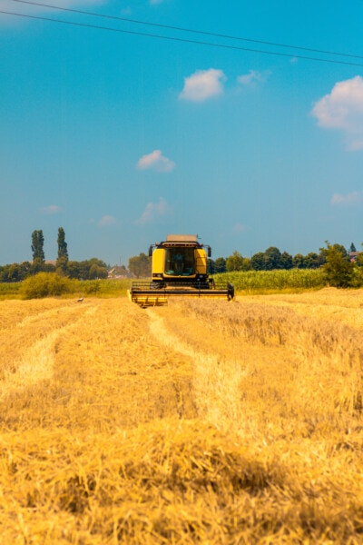 machine, harvester, agriculture, combine, wheat, summer season, crops, farmland, rural, farm