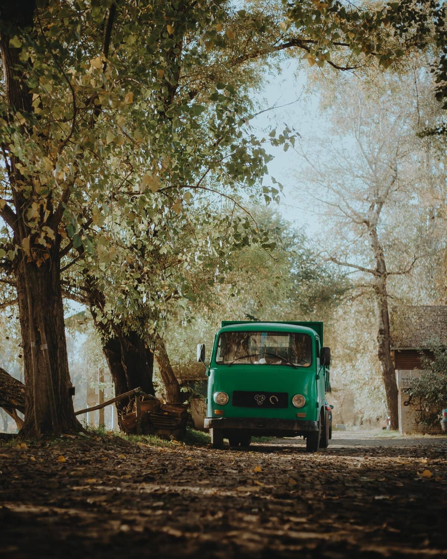 groen, ouderwetse, vrachtwagen, bosweg, vervoer, voertuig, weg, boom, landschap, milieu