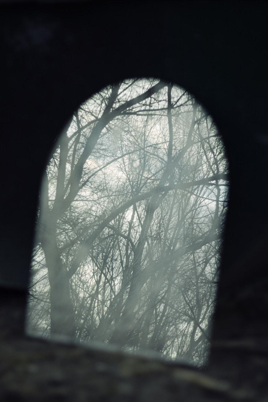 tunnel, brumeux, ombre, forêt, ténèbres, trou, fenêtre, nature, sombre, bois