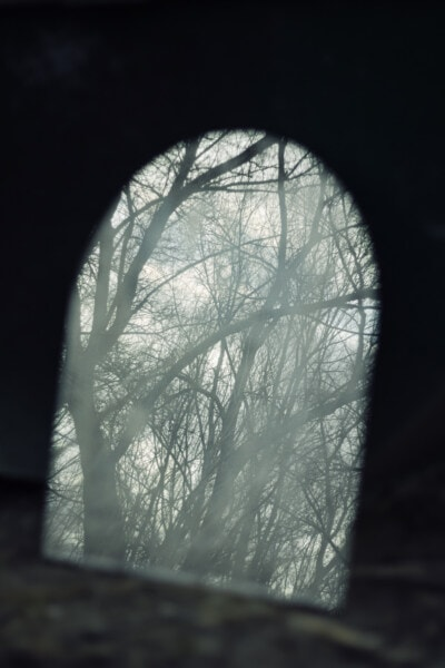 tunnel, foggy, shadow, forest, darkness, hole, window, nature, dark, wood