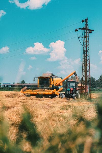 Wheatfield, Rolnictwo, Maszyna do zbioru, ciągnika, pszenicy, maszyny, przemysł, zagroda, pole, gleby