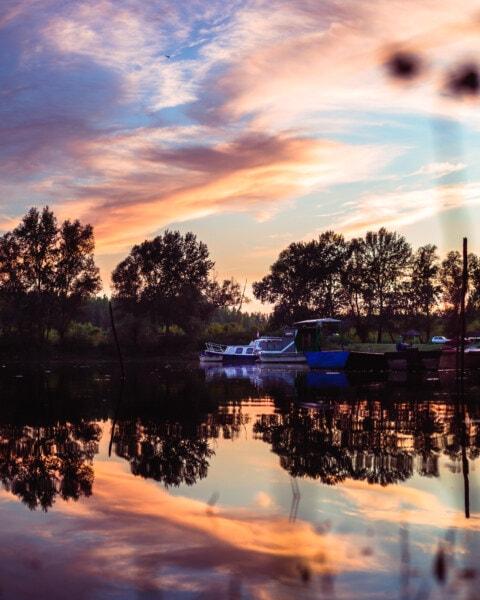 refleksion, solnedgang, vand, daggry, søen, træ, aften, skumring, udendørs, natur