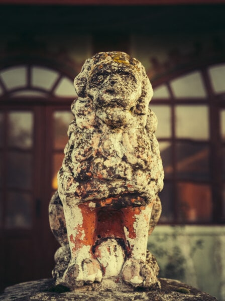 sculpture, lion, concrete, art, statue, old, ancient, architecture, stone, temple