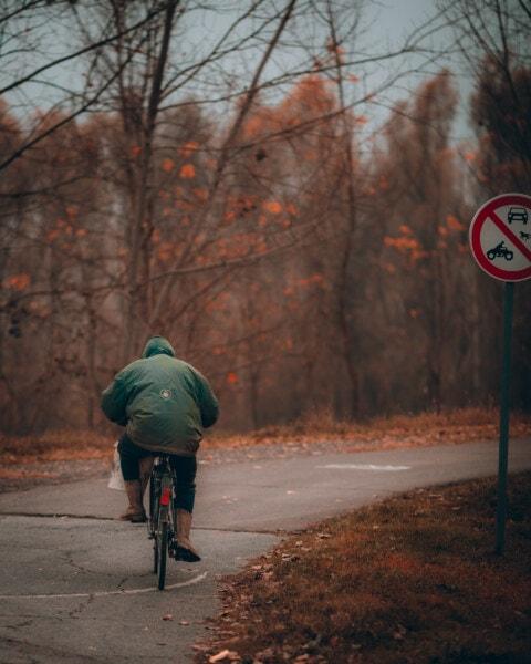 pessoa, de condução, sinal, bicicleta, pintor de, estrada, rua, roda, ciclista, bicicleta