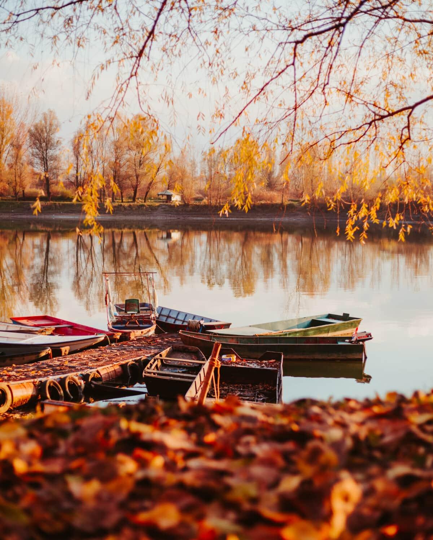 vissersboot, boot, herfst, oever, landschap, lakeside, boom, water, reflectie, meer