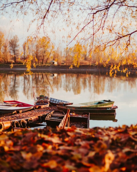 fishing boat, boat, autumn, shore, landscape, lakeside, tree, water, reflection, lake