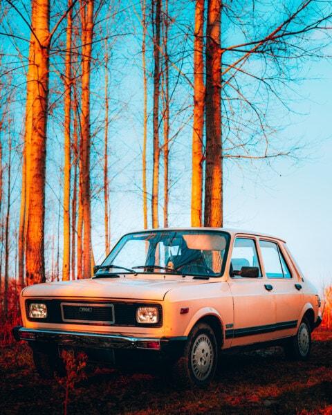Juhoslávia, auto, staromódny, starý štýl, lesná cesta, vozidlo, preprava, automobil, cestné, klasický