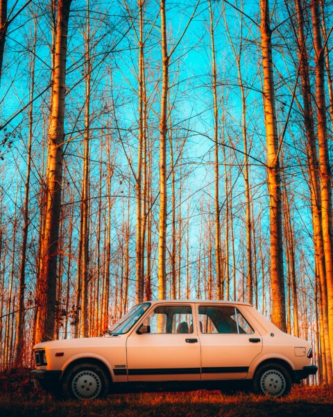 Zastava 101, car, Serbia, nostalgia, old fashioned, old, sedan, trees, forest, wood