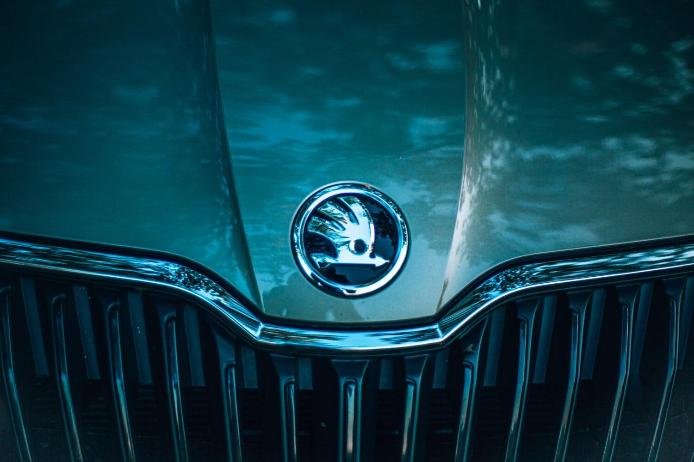 Skoda, Symbol, Zeichen, Chrom, metallische, Auto, automotive, Kühlergrill, Reflexion, Licht