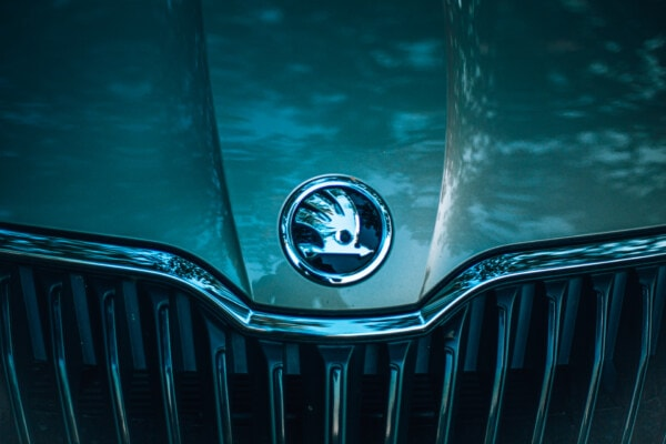 Skoda, symbol, sign, chrome, metallic, car, automobile, grille, reflection, light