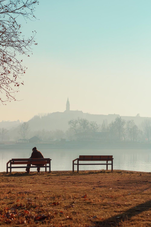 gepensioneerde, vergadering, oever van de rivier, ochtend, mist, rivier, lakeside, dageraad, oever, water