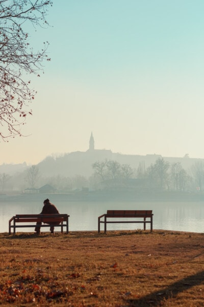 pensioner, sitting, riverbank, morning, fog, river, lakeside, dawn, shore, water