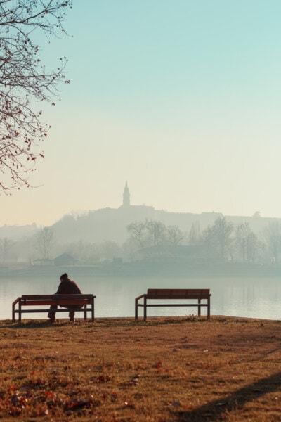 пенсионер, седи, реката, сутрин, мъгла, река, Lakeside, зората, Шор, вода