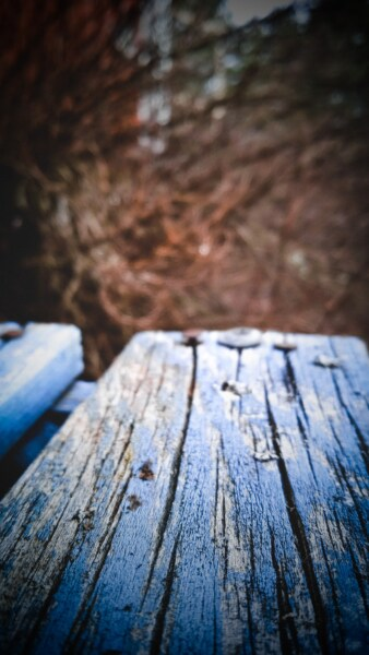 wooden, planks, blue, paint, decay, old, abandoned, wood, nature, dark