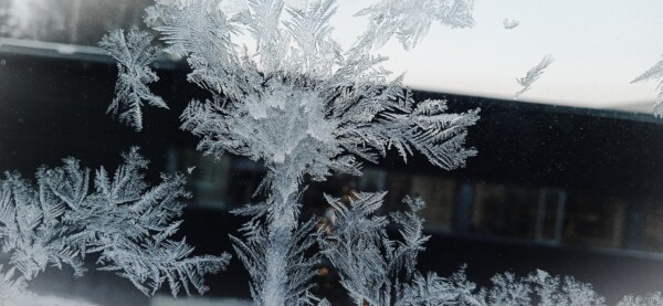 glass, freeze, frosty, frost, snowflakes, close-up, details, snowflake, cold, snow
