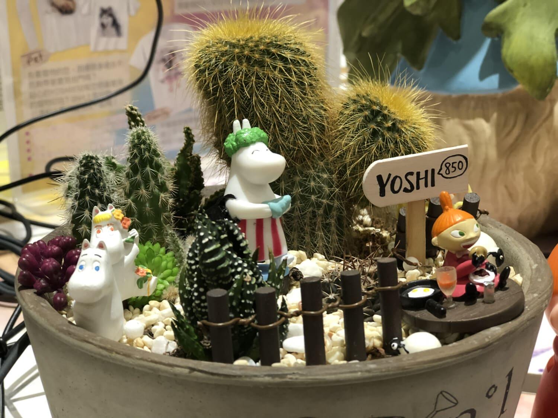 Blumentopf, Kaktus, Dekoration, Spielzeug, Miniatur, Spielzeugladen, Blume, Interieur-design, drinnen, Still-Leben