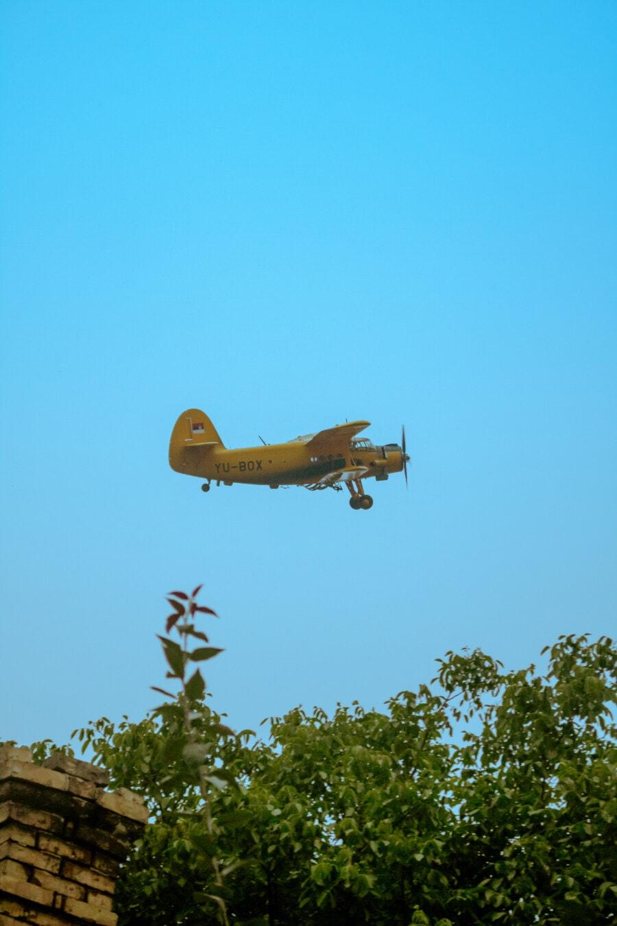 aérodynamique, biplan, avion, style ancien, Flyover, en volant, jet, avion, transport, aile