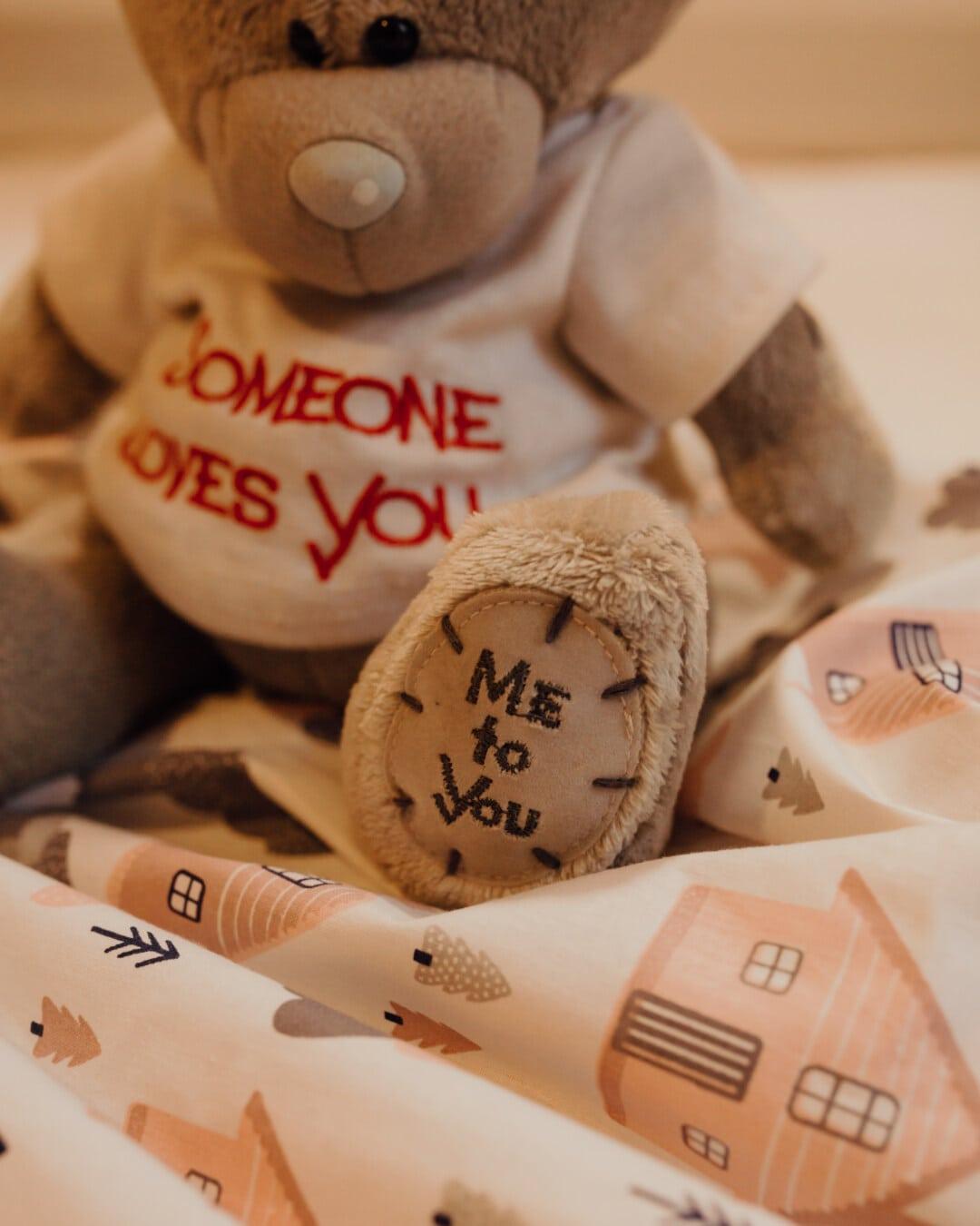nallebjörn leksak, leksak, plysch, text, meddelande, filt, inomhus, handgjorda, traditionella, brun