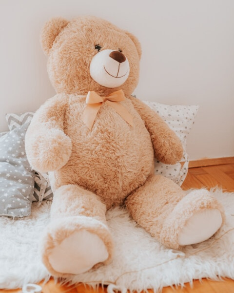 teddy bear toy, plush, big, toy, light brown, gift, bear, indoors, brown, soft