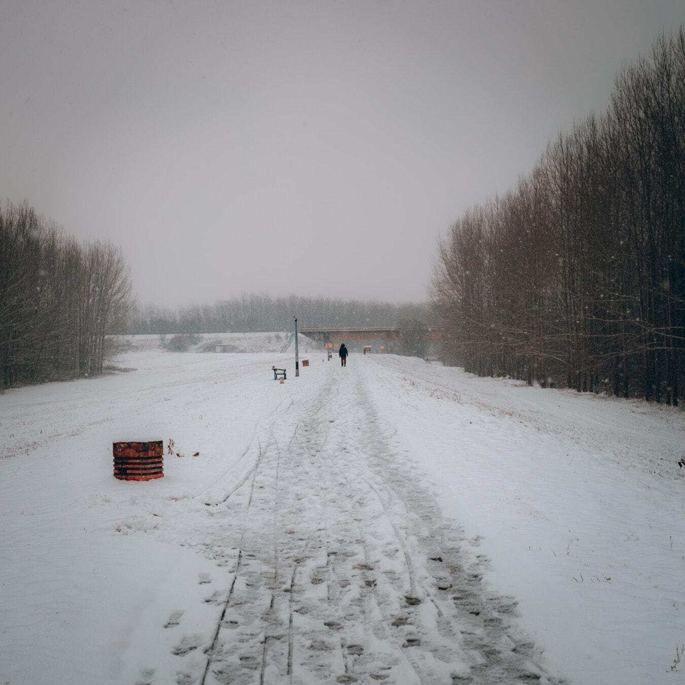 Fußspuren, Schnee, Schritt, Fuß, Person, Straße, Winter, Schneesturm, gefroren, Nebel