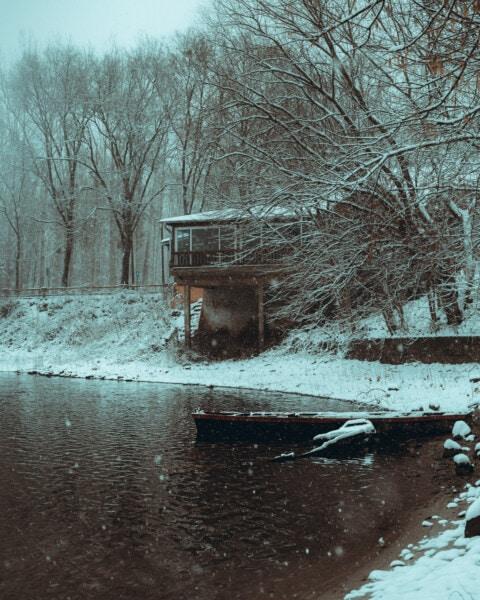 Cottage, Hiver, tempête de neige, au bord du lac, côte, paysage, arbres, glace, neige, météo