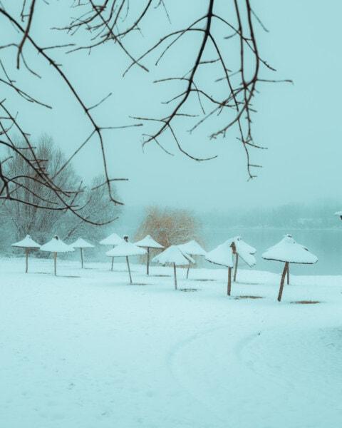 Strand, Schnee, Winter, Sonnenschirm, Landschaft, Küste, Kälte, Wetter, Holz, Natur