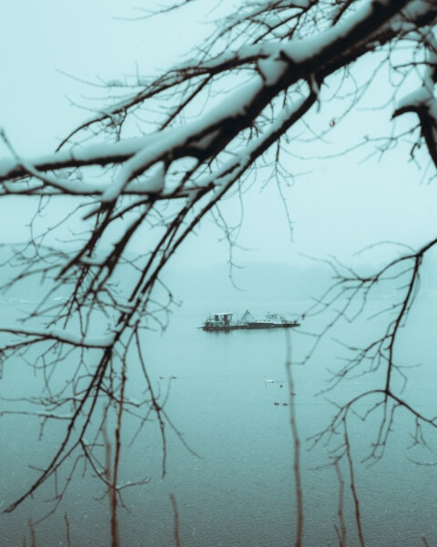 See, Angelboot/Fischerboot, Winter, schneebedeckt, Geäst, Nebel, eisig, Natur, Struktur, Schnee