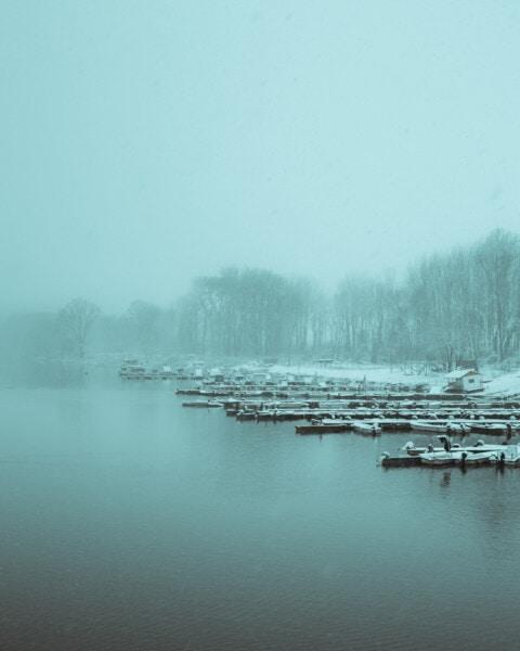 neblig, Morgen, Winter, am See, November, Flussschiff, Seebrücke, Wasser, Nebel, Schnee