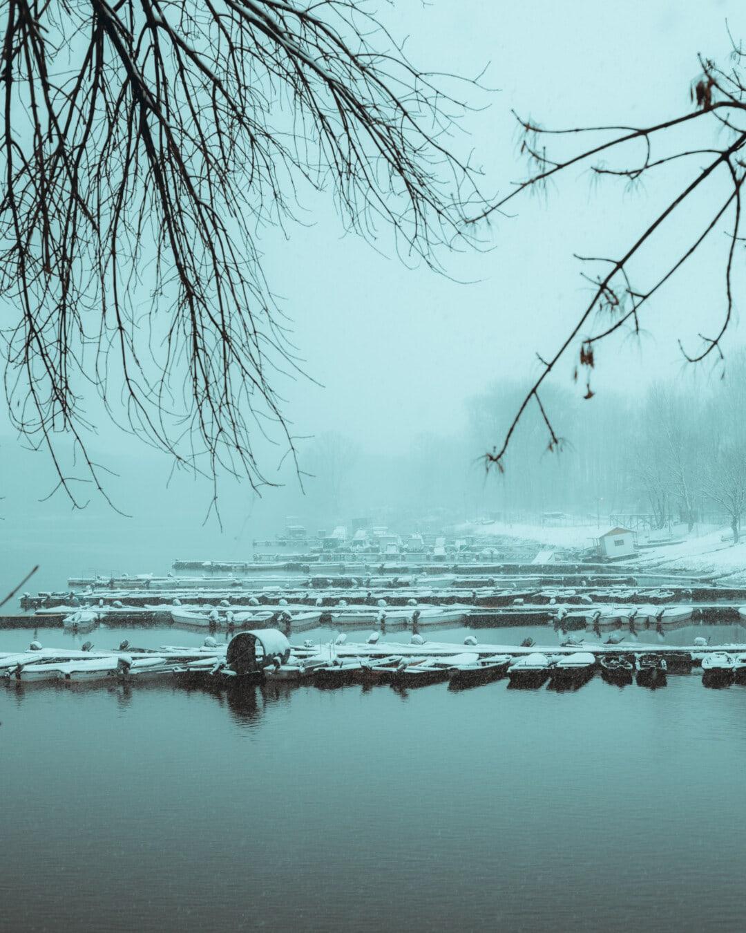 Nebel, Winter, Wasser, See, Struktur, Natur, Schnee, Nebel, Reflexion, Dämmerung