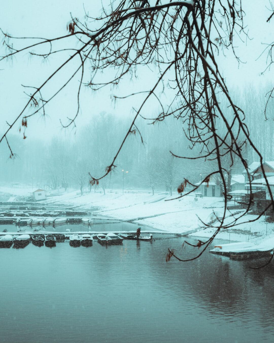neigeux, météo, bateau de rivière, berge, brumeux, remise à bateaux, crépuscule, bateaux, arbre, neige