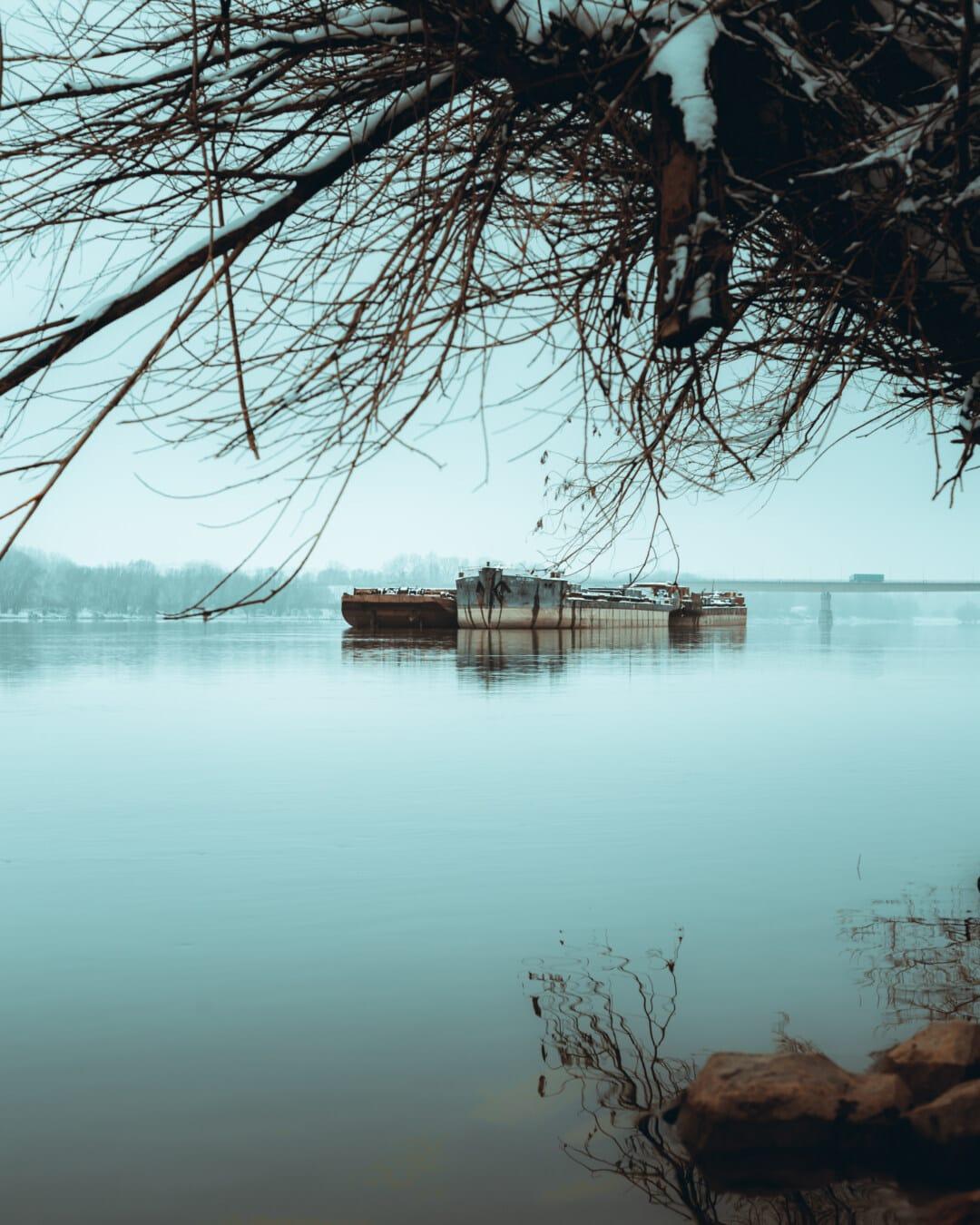 Frachtschiff, Transport, schwere, Schiff, industrielle, Winter, Reisen, neblig, Flussufer, Wasser