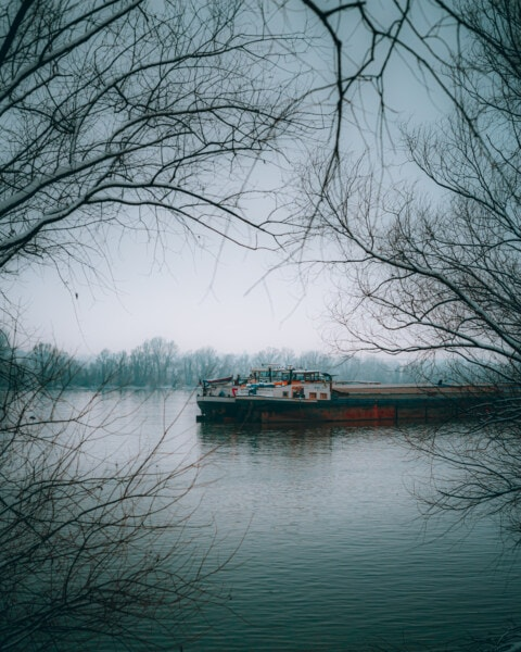 cargo ship, winter, morning, barge, foggy, riverbank, trees, water, lake, landscape