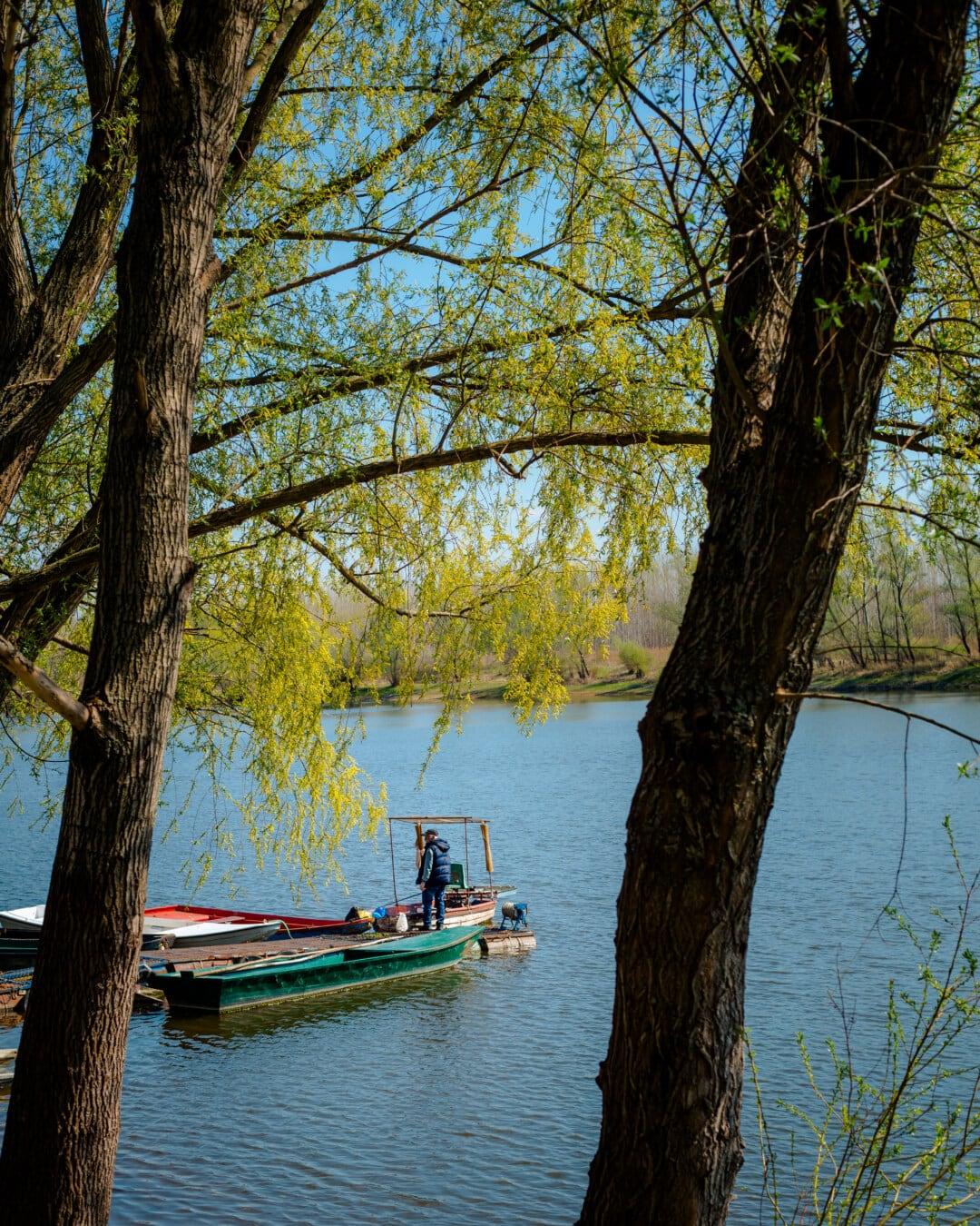 Flussschiff, Fluss, Flussufer, Zweig, Boote, Kanal, Fischer, Person, Wasser, Struktur