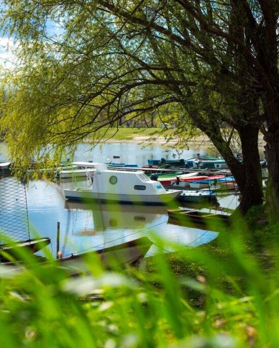 rivierboot, motorboot, boten, jacht, oever van de rivier, boom, schaduw, water, camper, meer