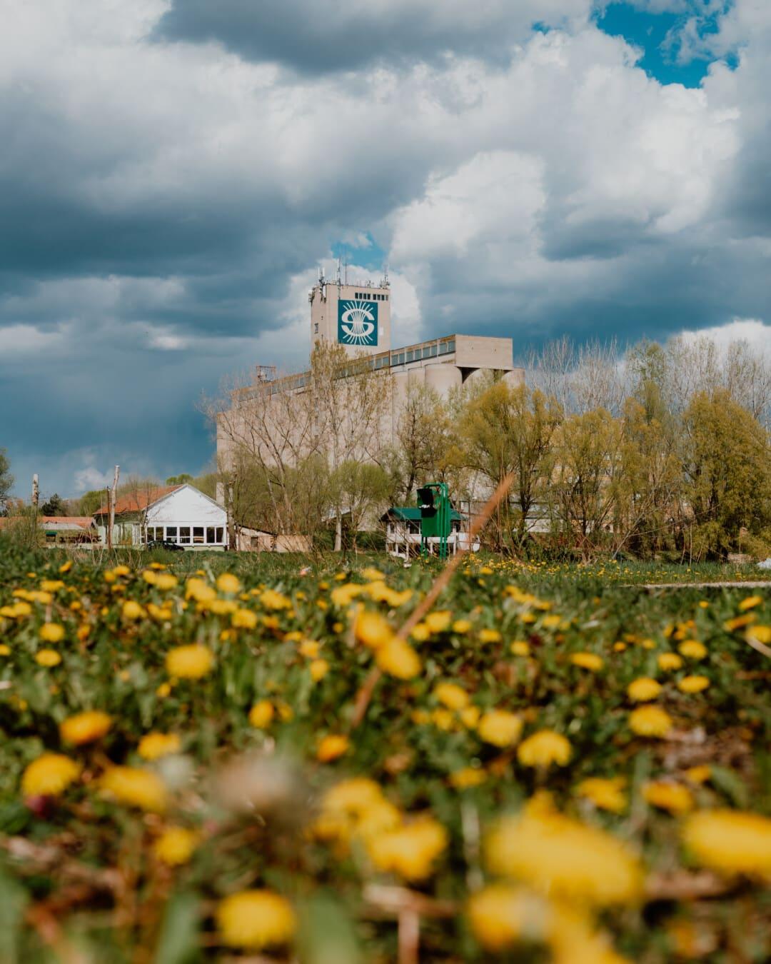 secteur d'activité, Factory, silo, zone urbaine, herbeux, rue, plante, nature, à l'extérieur, paysage