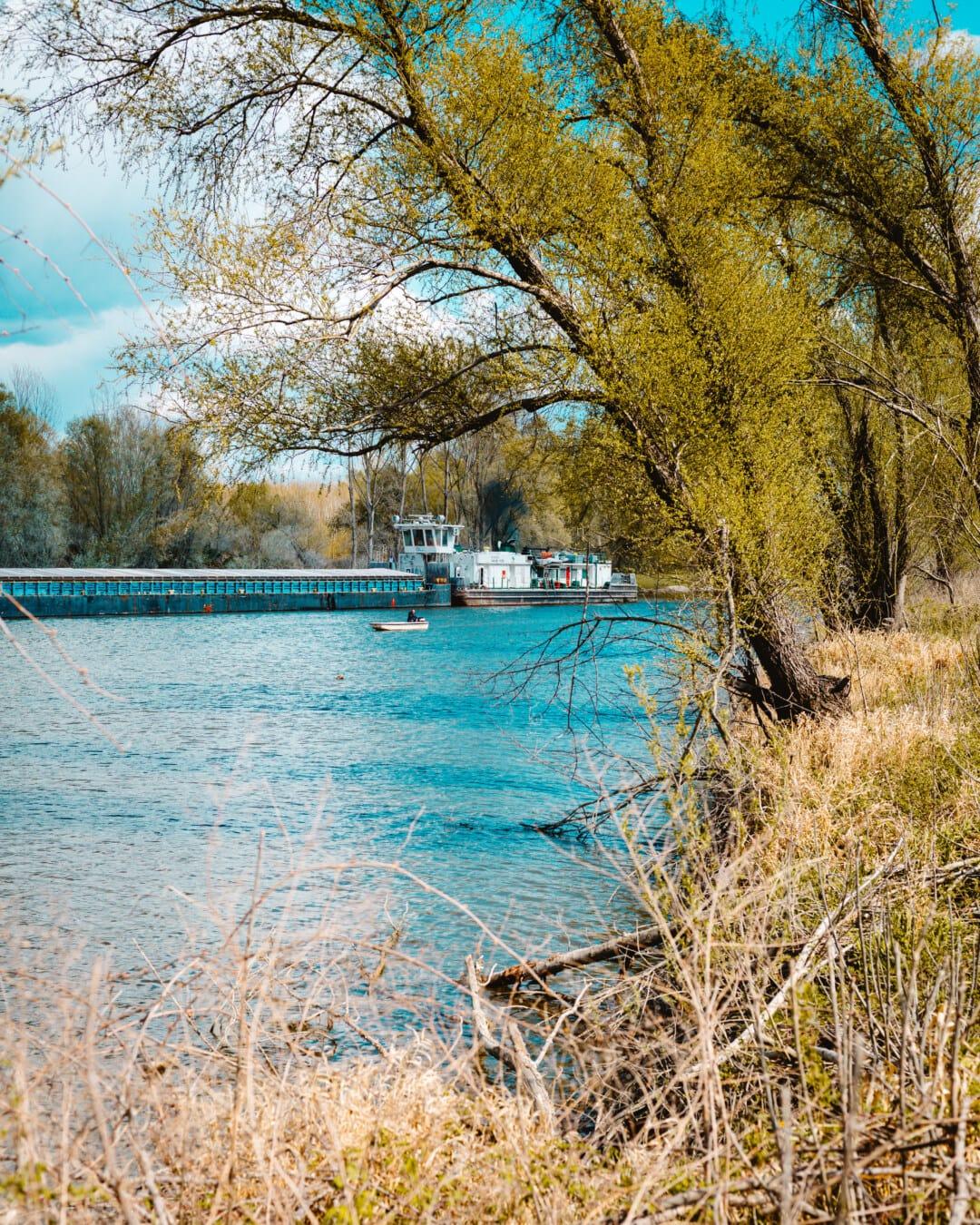 Barge, vrachtschip, verzending, kanaal, bos, water, landschap, meer, boom, natuur