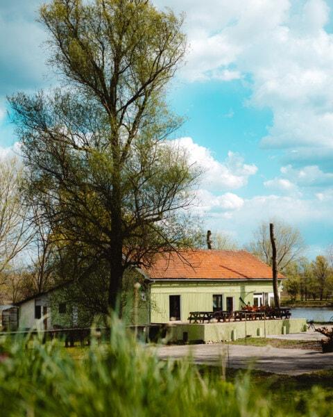 性质, 后院, 湖, 家庭, 房子, 餐厅, 花园, 春季时间, 结构, 构建