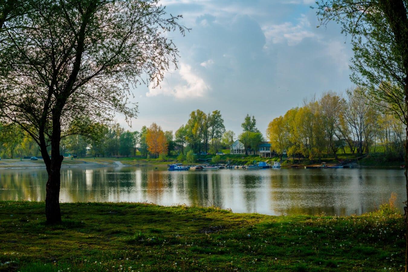 beau temps, au bord du lac, printemps, idyllique, Panorama, paysage, arbre, eau, rivière, forêt