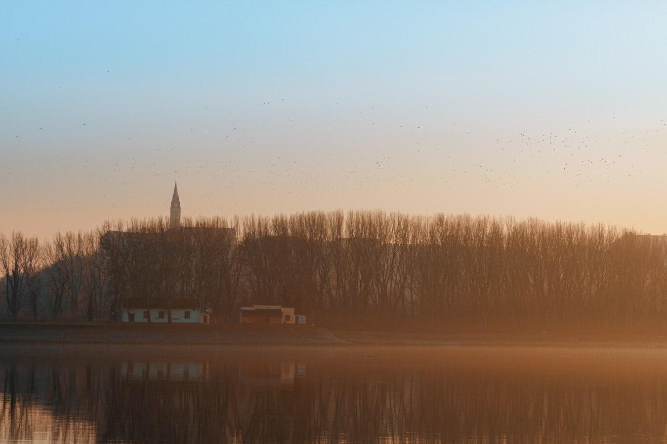 matin, rivière, rayons de soleil, lever du soleil, brumeux, réseau d'aqueduc, horizon, atmosphère, arbre, paysage
