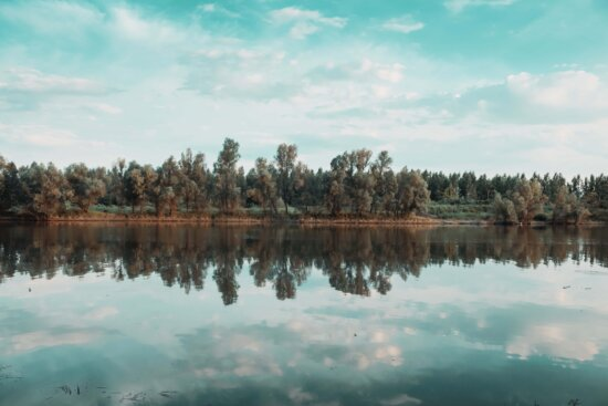 lakeside, placid, coast, reflection, blue sky, clouds, shore, forest, lake, water