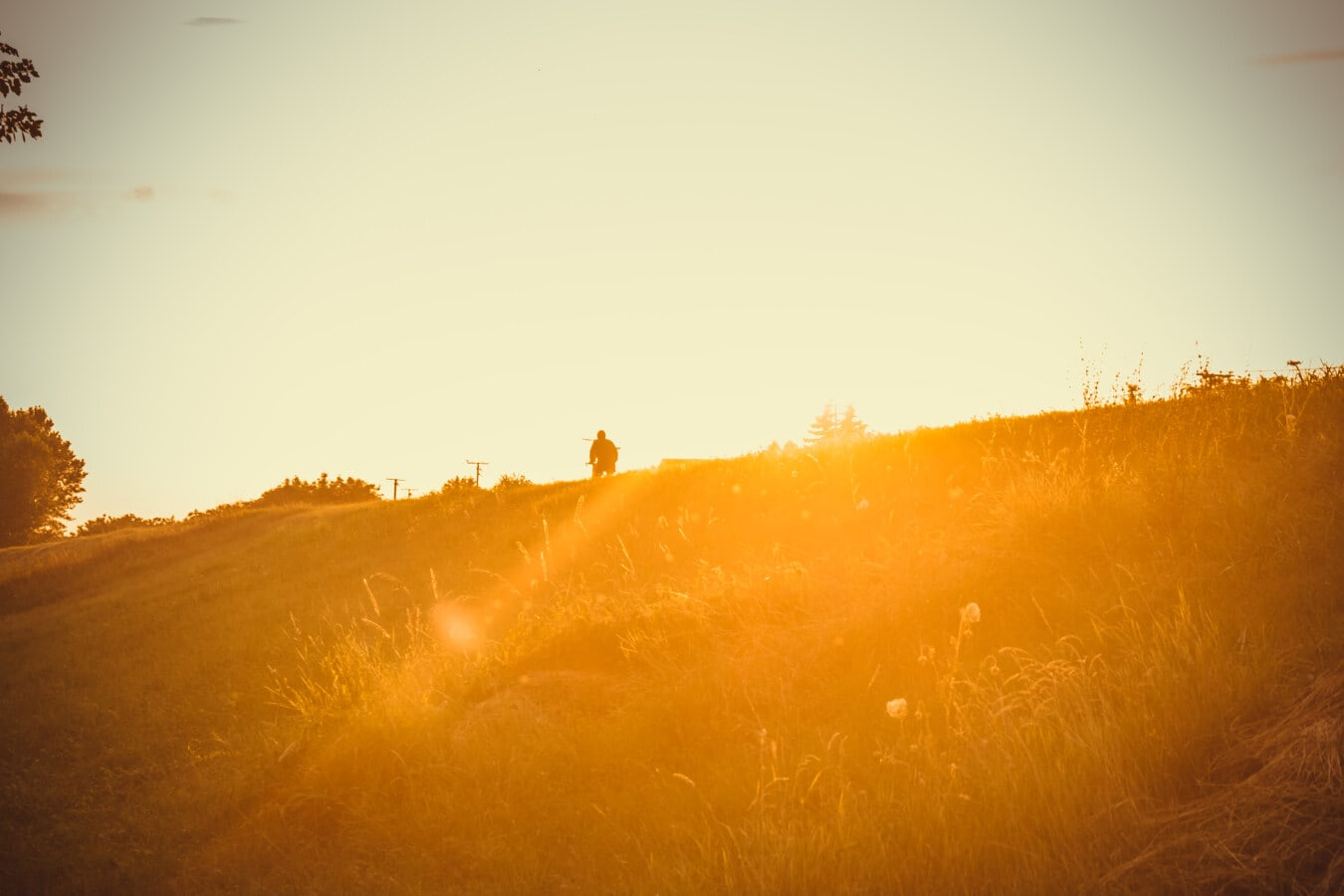 ensoleillée, rayons de soleil, ensoleillement, taches solaires, lumière du soleil, silhouette, lueur du soleil, majestueux, aube, coucher de soleil