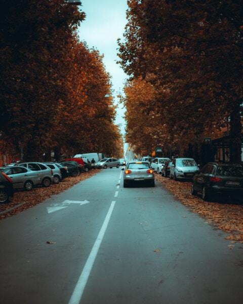 Automobili, area urbana, Via, Parcheggio, autunno, lotto di parcheggio, marciapiede, auto, strada, traffico