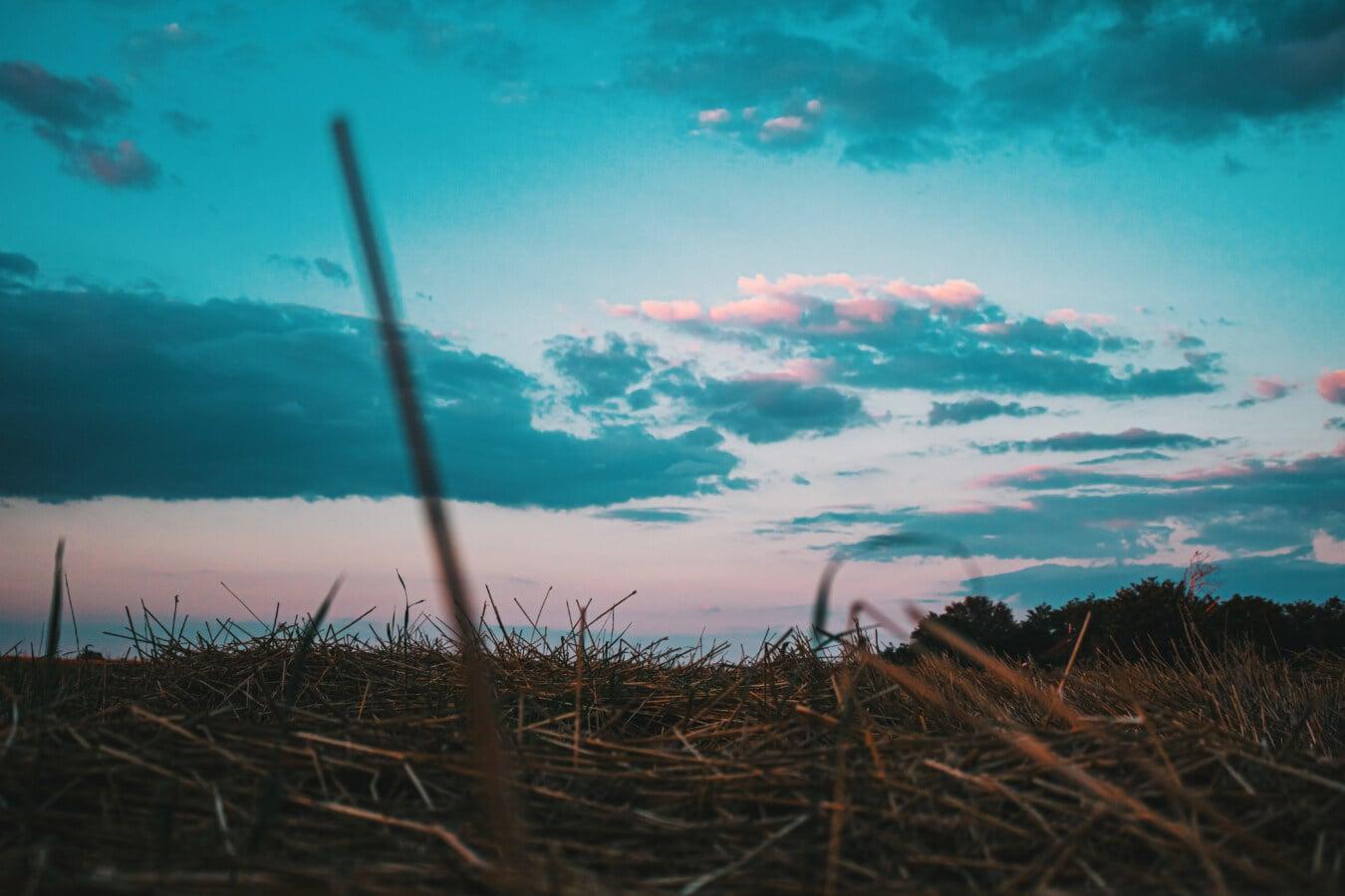 Dämmerung, landwirtschaftlich, Feld, Heu-Feld, schlechtes Wetter, bewölkt, Herbstsaison, Sonnenuntergang, Landschaft, Dämmerung