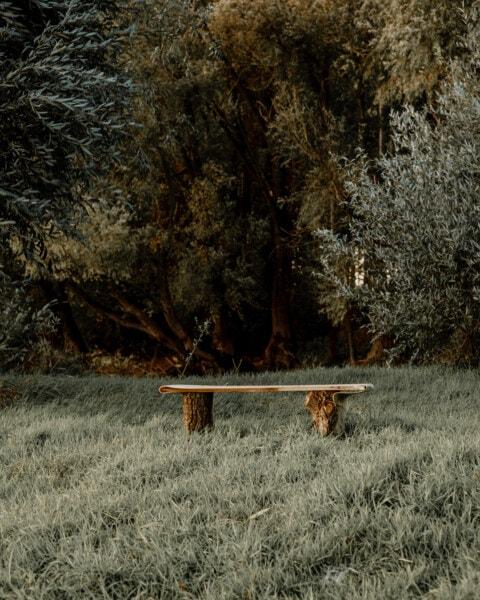 des ländlichen Raums, Sitzbank, verlassen, grasbewachsenen, Bäume, September, Herbstsaison, Struktur, Wald, Landschaft