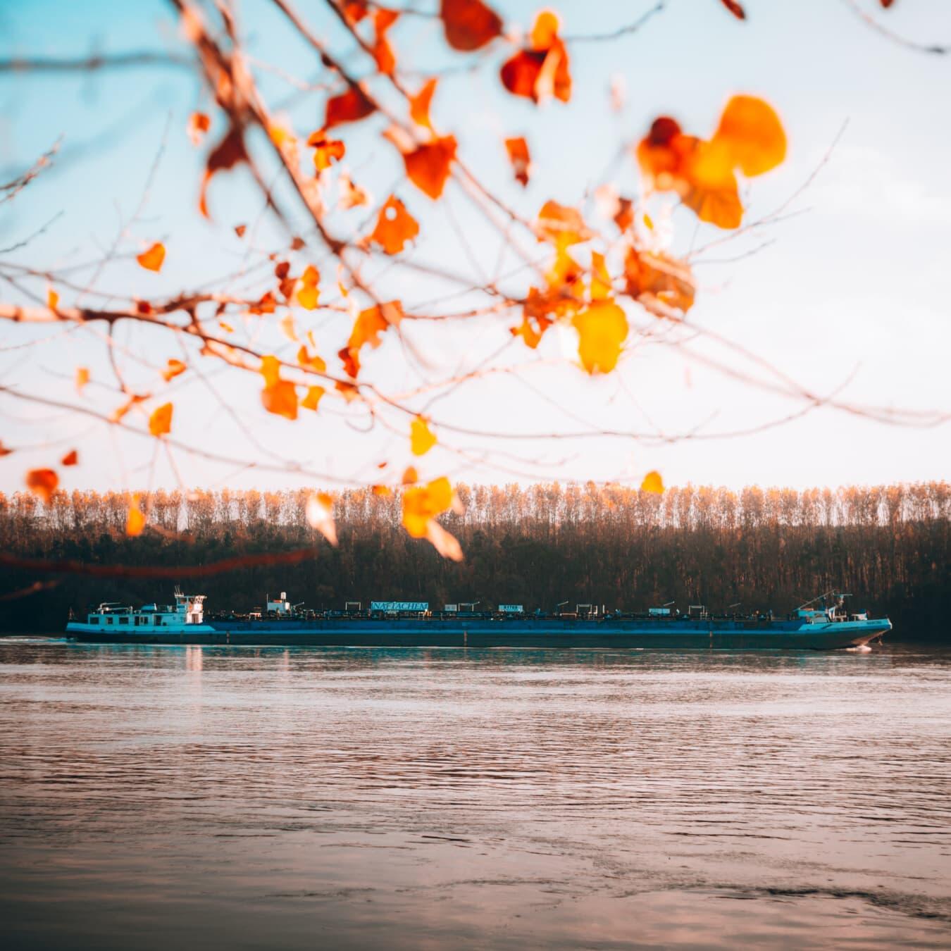 transport, rivière, voyage, Cargo, secteur d'activité, barge, eau, lumière, paysage, coucher de soleil