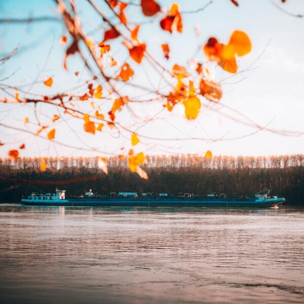 Transport, Fluss, Reisen, Frachtschiff, Branche, Lastkahn, Wasser, Licht, Landschaft, Sonnenuntergang